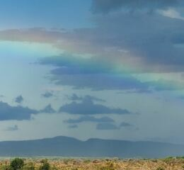 Madikwe safari lodge landscape with rainbow panorama